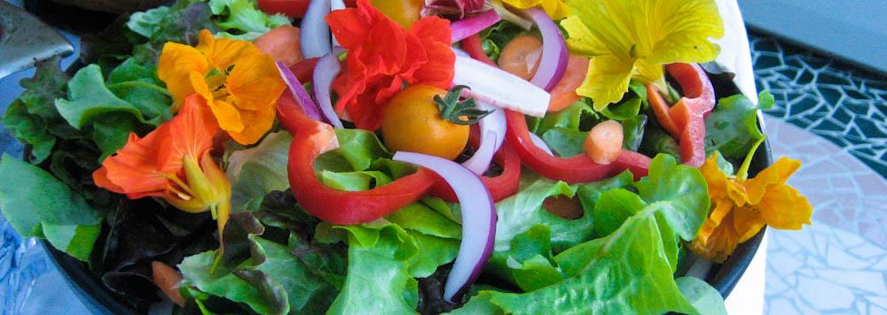 garden_salad_BBG